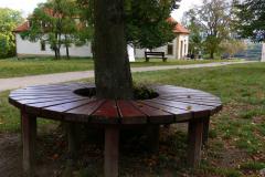 Skalka-lavicka-strom